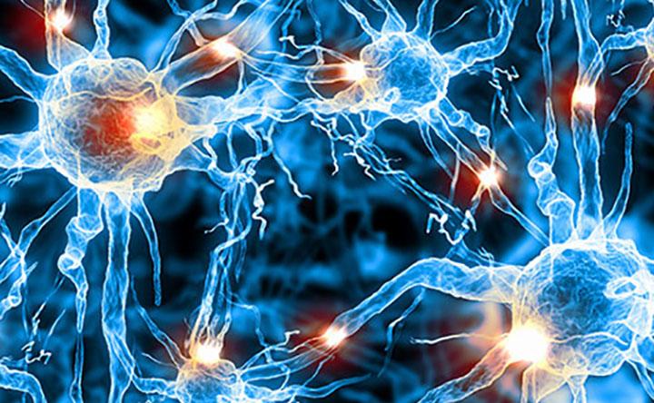 Epilessia: scoperto per la prima volta un marcatore della malattia