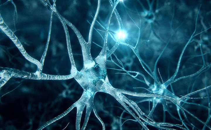 Scoperto un potenziale biomarcatore per la sclerosi multipla