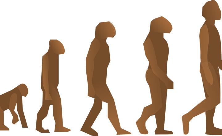 Le Cefalee di Darwin