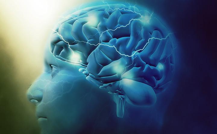 Che cosa succede quando il cervello muore?