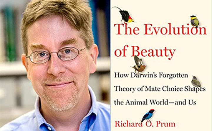 Una teoria darwiniana dimenticata capovolge tutto ciò che i biologi pensano dell'orgasmo femminile