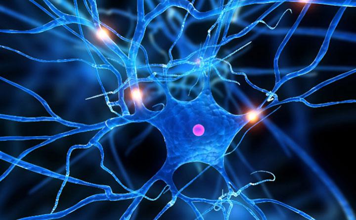 Come prevedere quali forme di sclerosi multipla peggioreranno?