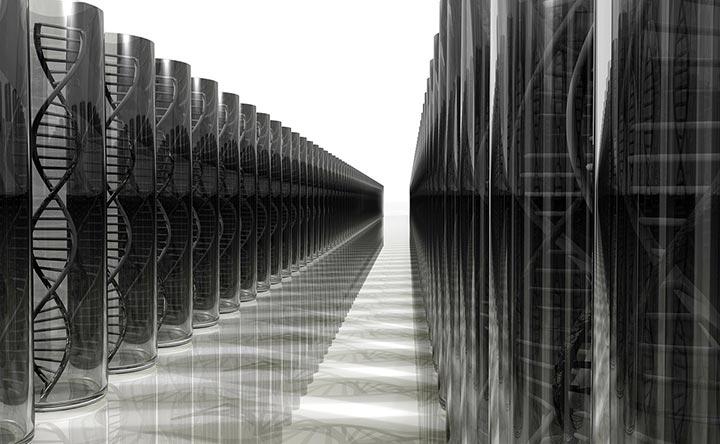 Geni umani: un nuovo modello ne facilita l'analisi