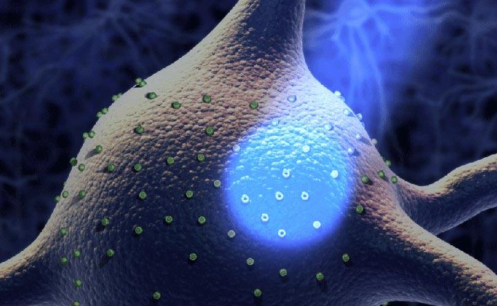 optogenetica