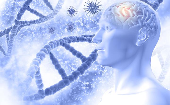 Malattia dell'Alzheimer: trovato un nuovo colpevole genetico