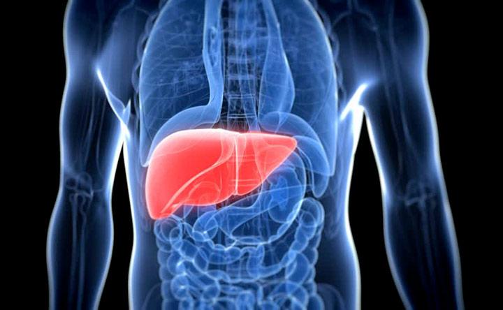 """""""Ananas Liver"""", le nanoparticelle smart vincono l'Open Accelerator"""