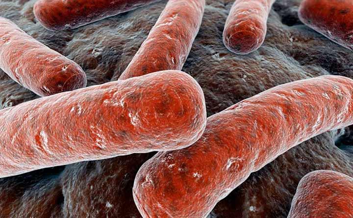 Tubercolosi: test per diagnosticarla direttamente dalle urine